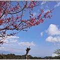 赤柯山櫻花-2019-03-103.jpg