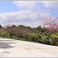 赤柯山櫻花-2019-03-122.jpg