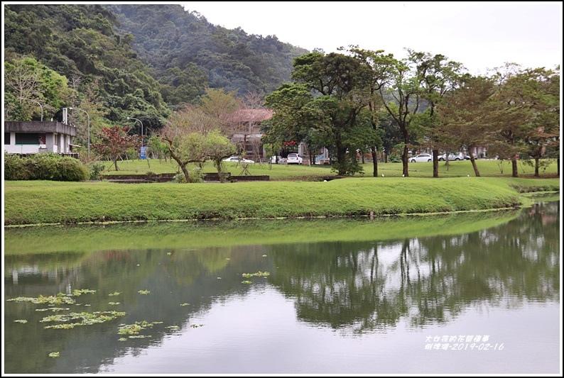蜊埤湖-2019-02-04.jpg