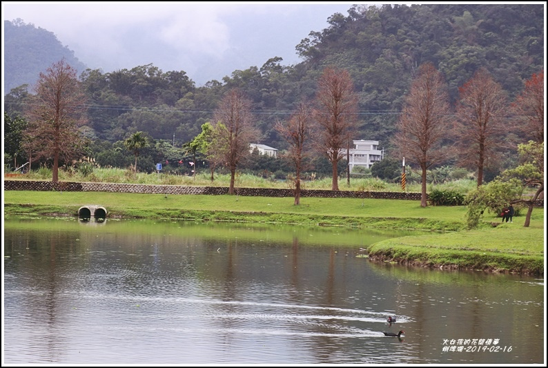 蜊埤湖-2019-02-06.jpg