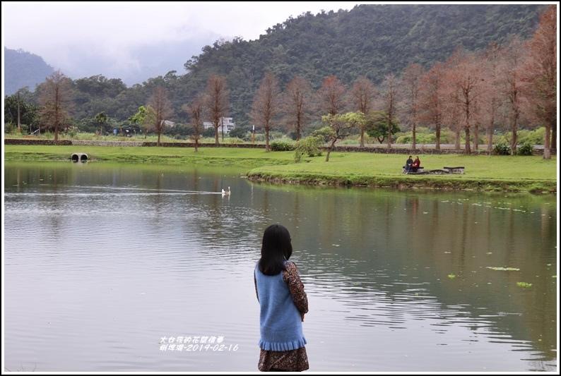 蜊埤湖-2019-02-09.jpg