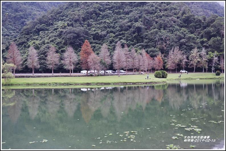 蜊埤湖-2019-02-22.jpg