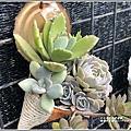 瑞穗千蘭園多肉植物-2019-03-35.jpg