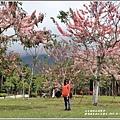 鹿鳴溫泉酒店花旗-2019-03-10.jpg