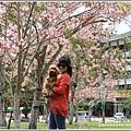 鹿鳴溫泉酒店花旗-2019-03-42.jpg