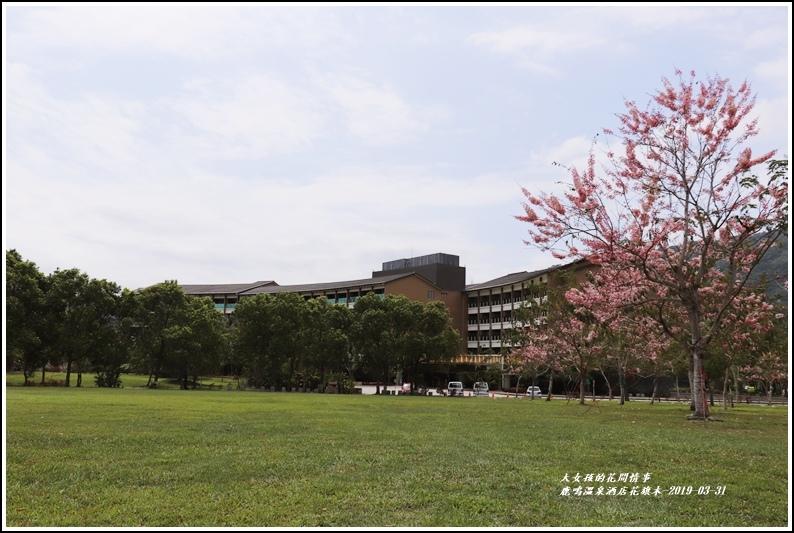鹿鳴溫泉酒店花旗-2019-03-53.jpg