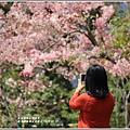 鹿鳴溫泉酒店花旗-2019-03-61.jpg