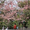 鹿鳴溫泉酒店花旗-2019-03-62.jpg