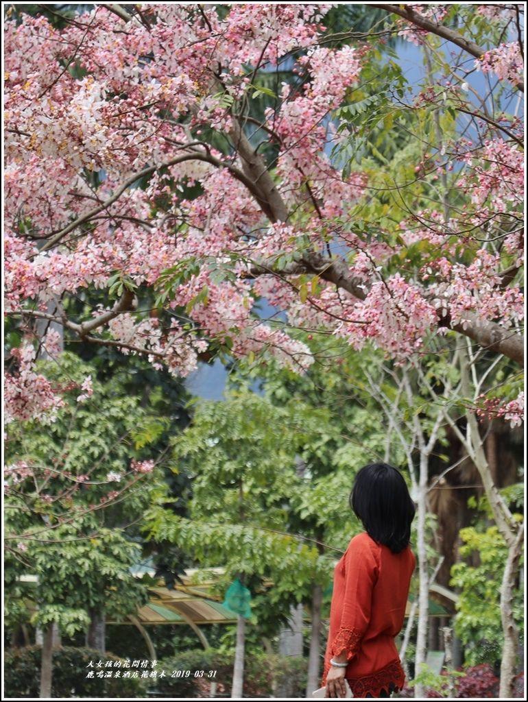 鹿鳴溫泉酒店花旗-2019-03-66.jpg