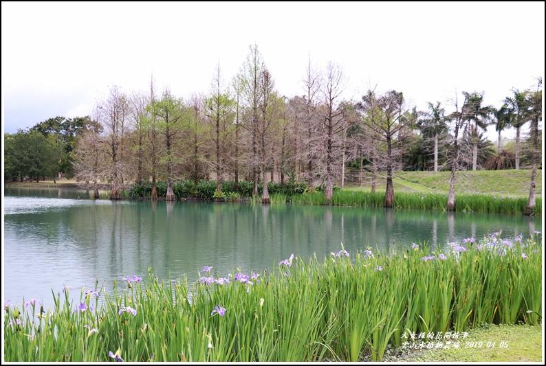 雲山水植物農場-2019-04-02.jpg