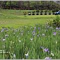 雲山水植物農場-2019-04-09.jpg