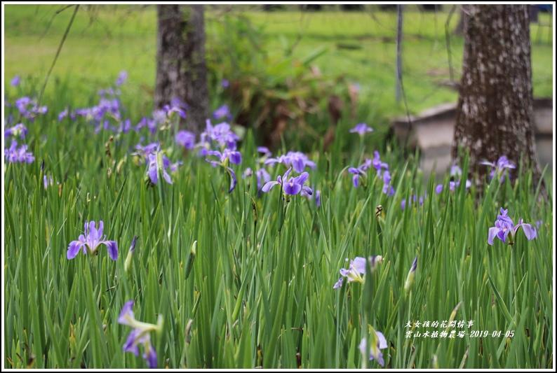 雲山水植物農場-2019-04-10.jpg