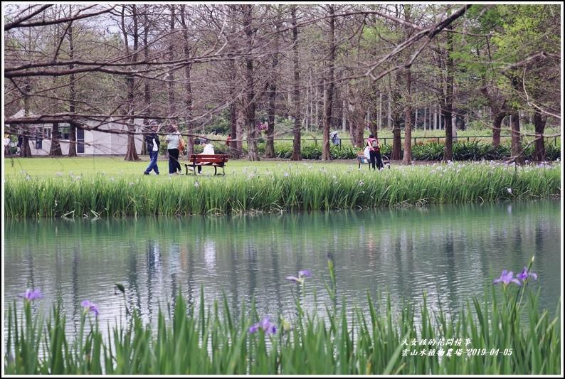 雲山水植物農場-2019-04-11.jpg