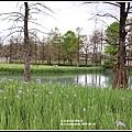 雲山水植物農場-2019-04-20.jpg