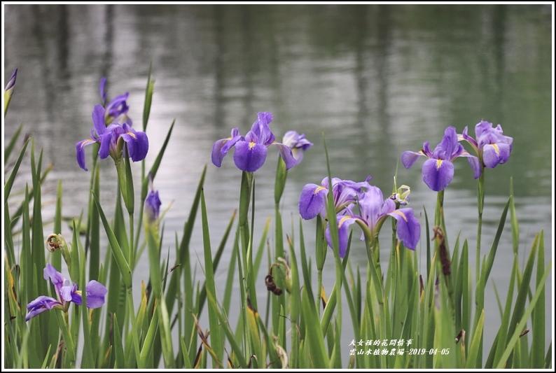 雲山水植物農場-2019-04-21.jpg