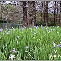 雲山水植物農場-2019-04-22.jpg