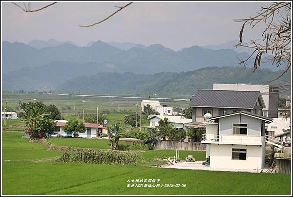 花蓮193(樂德公路)-2019-03-12.jpg
