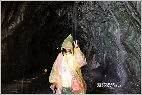 白楊步道(水濂洞)-2019-04-04.jpg