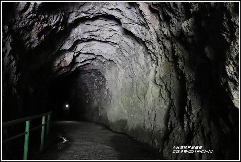 白楊步道-2019-04-25.jpg