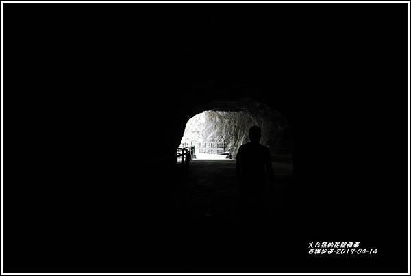 白楊步道-2019-04-39.jpg