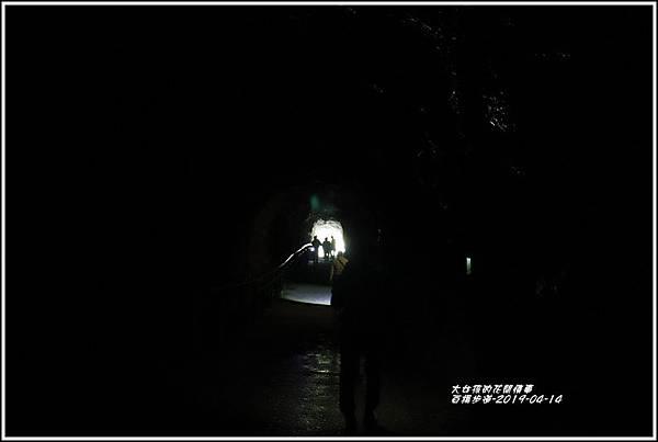 白楊步道-2019-04-43.jpg