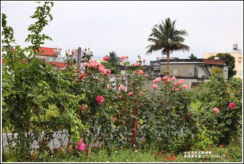 嘉德萱草園-2019-04-02.jpg