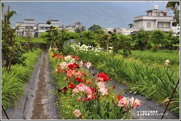 嘉德萱草園-2019-04-06.jpg