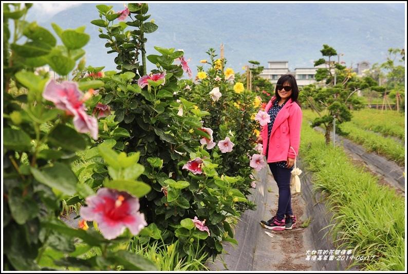 嘉德萱草園-2019-04-38.jpg
