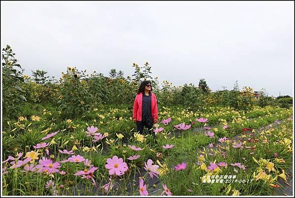 嘉德萱草園-2019-04-55.jpg