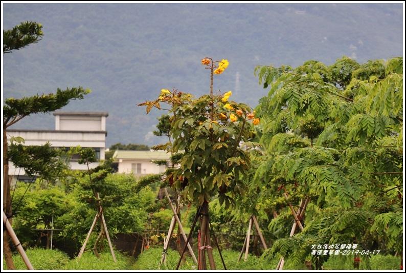 嘉德萱草園-2019-04-80.jpg