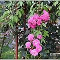 嘉德萱草園-2019-04-88.jpg