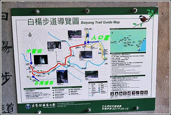 白楊步道-2019-04-08.jpg