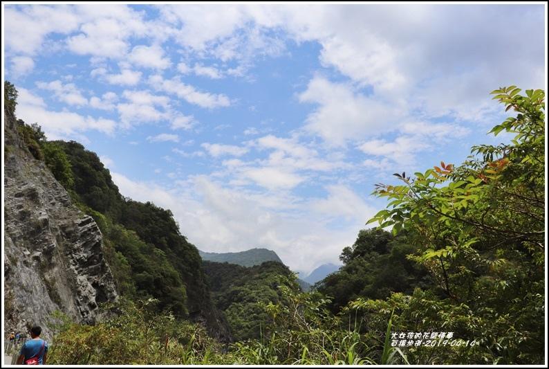 白楊步道-2019-04-64.jpg