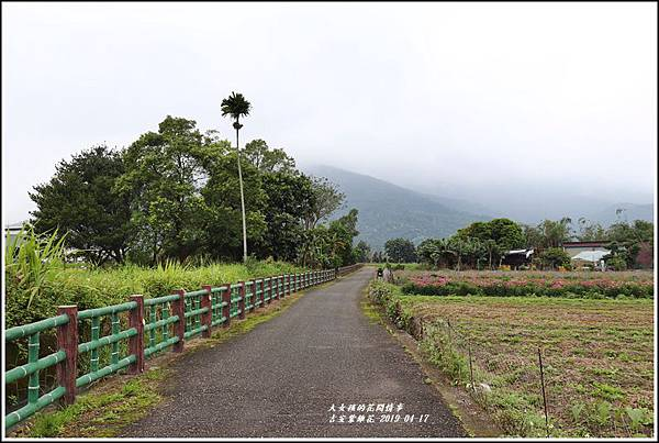 吉安紫錐花-2019-04-19.jpg