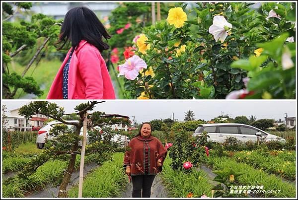 嘉德萱草園-2019-04-89.jpg