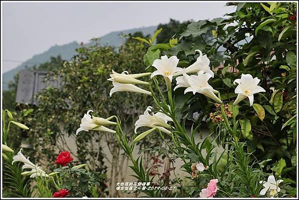 瑞北社區文心蘭-2019-04-33.jpg