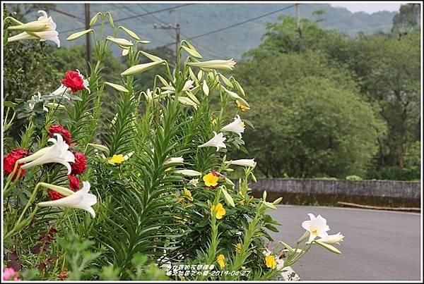 瑞北社區文心蘭-2019-04-34.jpg