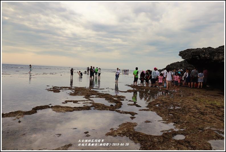 衫福生態廊道(潮間帶)-2019-04-40.jpg