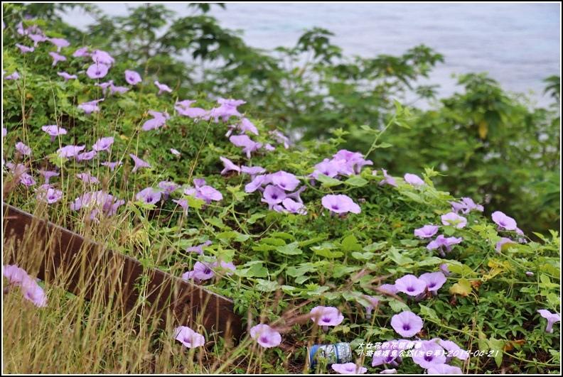 小琉球環島公路(旭日亭)-2019-04-06.jpg