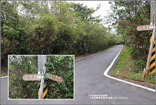 小琉球環島公路(老榕樹)-2019-04-06.jpg
