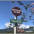 長橋秧苗場花旗木-2019-04-21.jpg