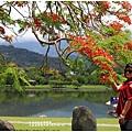 大坡池環湖步道-2019-05-10.jpg