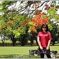 大坡池環湖步道-2019-05-12.jpg