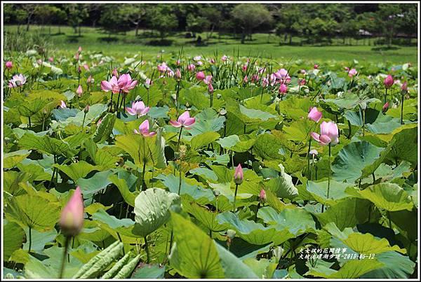 大坡池環湖步道-2019-05-21.jpg