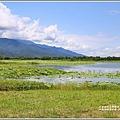 大坡池環湖步道-2019-05-24.jpg