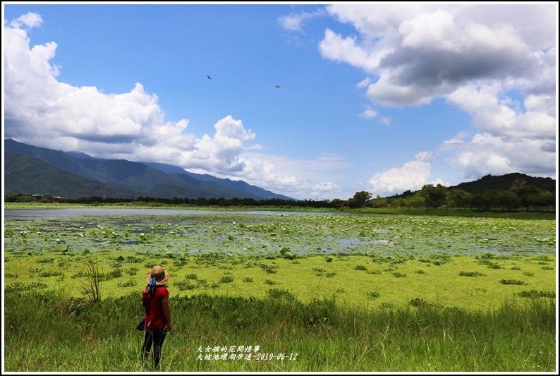 大坡池環湖步道-2019-05-29.jpg