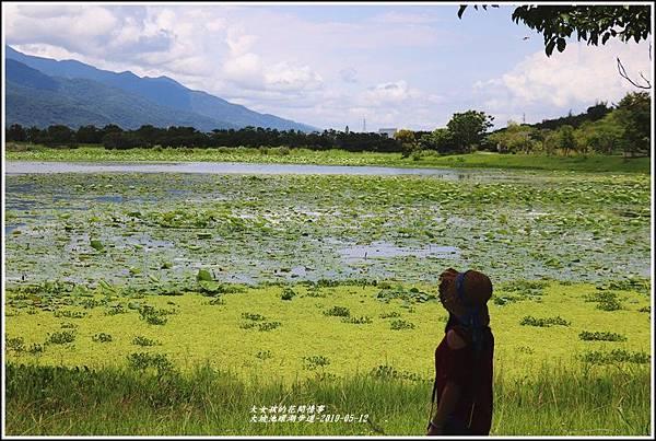 大坡池環湖步道-2019-05-30.jpg