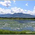 大坡池環湖步道-2019-05-38.jpg