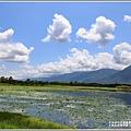 大坡池環湖步道-2019-05-40.jpg