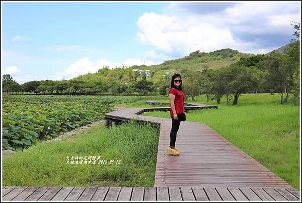 大坡池環湖步道-2019-05-43.jpg